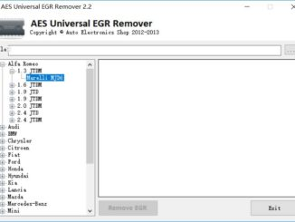 AES Universal EGR Remover