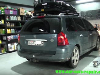 G-San2Peugeot 307 Risk of ice Particle Filter Additive Level Too Low Repair (1)