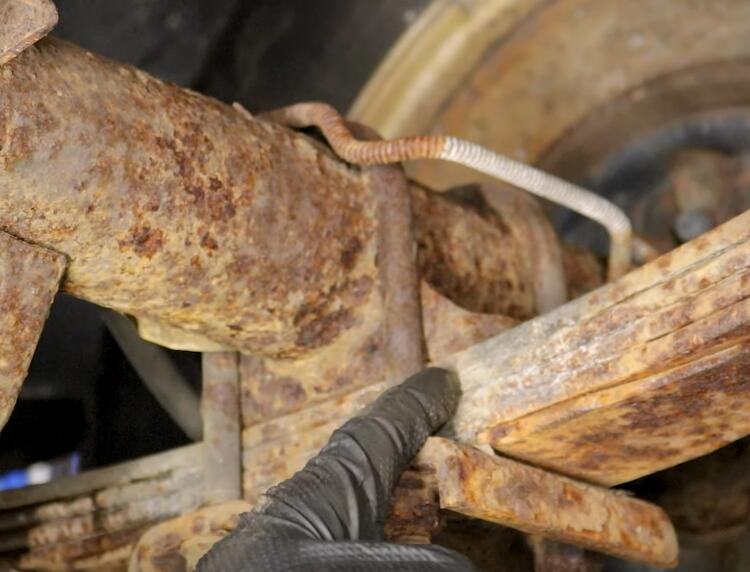 How-to-Inspect-Leaf-Spring-Suspensions-for-Dodge-Pickup-Truck-6
