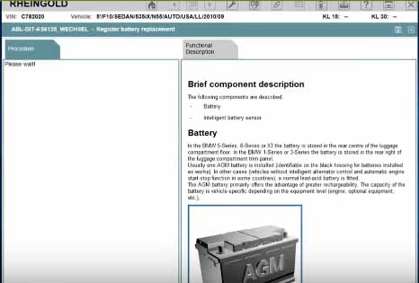 Rheingold ISTA Register New Battery for BMW F10 (4)