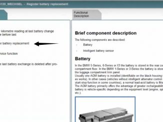 Rheingold ISTA Register New Battery for BMW F10 (5)