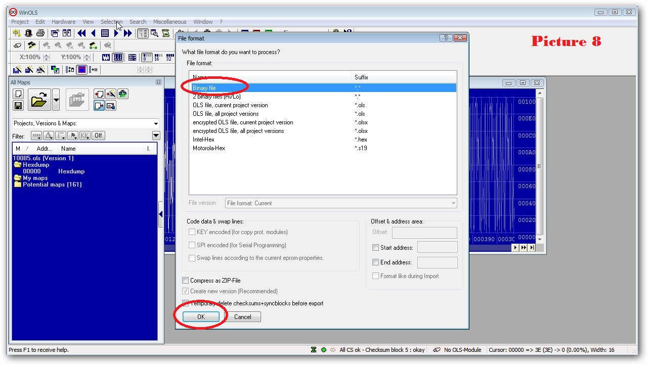 How to Make Checksums for ECU Files with WinOLS (10)