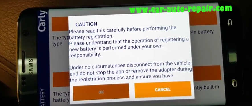 Carly BMW Register Battery for BMW F10 535i 2011 (13)