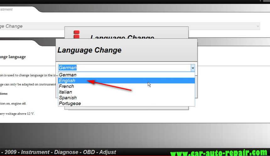 Delphi DS150E Change InstrumentDashboard Language for Audi A3 (7)